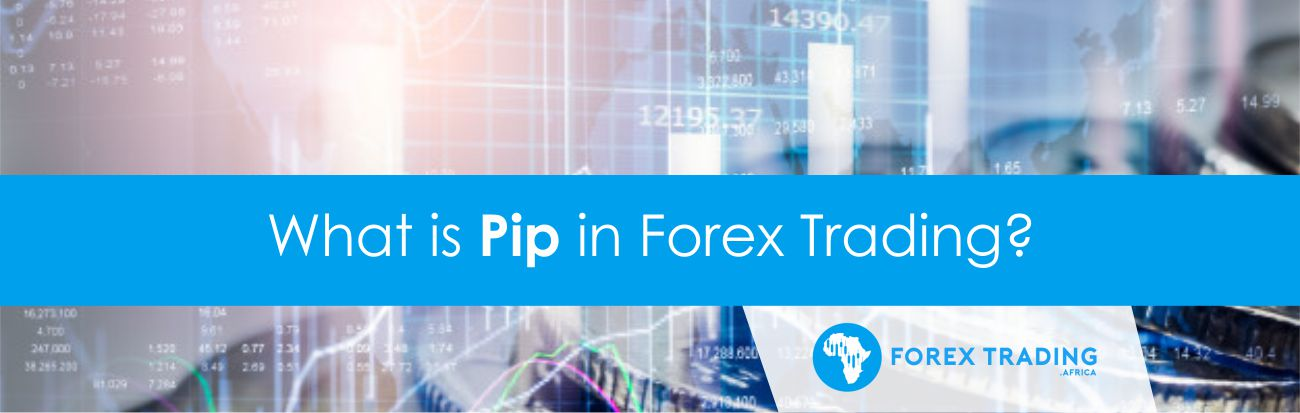 What is a Pip in Forex